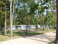 carol lynn resorts
