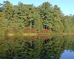 Belhaven lake 250 x 200-117