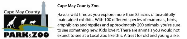 cape-may-zoo-attraction